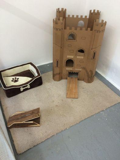 Bunny: Penthouse Suite